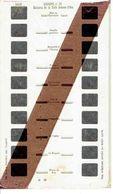 STEREOCARTE LESTRADE. 10 Vues Kodachrome - LOURDES. 20.  1950/58. - Diapositives