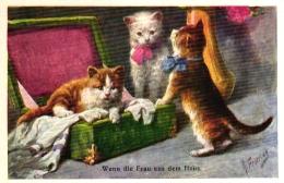 Katze, Katzen Mit Einer Schachtel, Sign. Feiertag - Feiertag, Karl