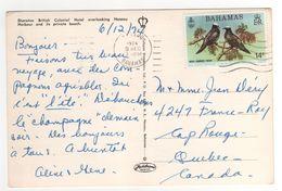 """Beau Timbre """" Oiseaux """" Sur Carte , Cp , Postcard Du 9 DEC 1974  . - Bahamas (1973-...)"""