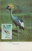 Ouganda Carte Maximum 1987 Oiseaux Grue 477 - Ouganda (1962-...)