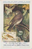Sierra Leone Carte Maximum 1985 Oiseaux Gobe Mouches 633 - Sierra Leone (1961-...)