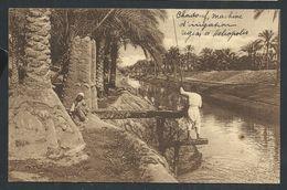 +++ CPA - Afrique - EGYPTE - Chadouf - Machine D'irrigation Région D' HELIOPOLIS - Nels   // - Le Caire
