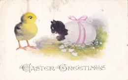 AQ70 Greetings - Easter Greetings - Egg, Chick, Cat - Pâques