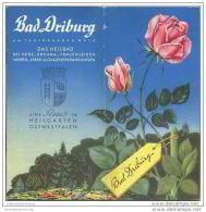 Bad Driburg 1954 - 12 Seiten Mit 14 Abbildungen - Nordrhein-Westfalen