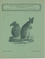 Couverture De Cahier D'Ecolier - Le Kanguroo - Collection Lebrun - Blotters