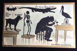 Botot Rue Paix Paris Chromo Ombres Chinoises Champenois Dent Dentiste Naturaliste Chauve Souris Squelette - Andere