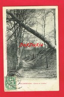 [54] Meurthe Et Moselle > BELLEFONTAINE Chemin De Liverdun - Frankrijk