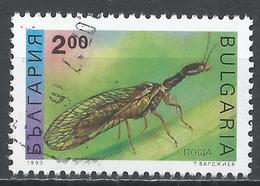 Bulgaria 1993. Scott #3711 (U) Insect, Mayfly * - Bulgarie