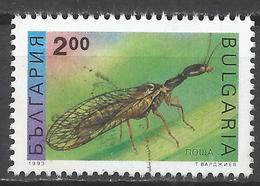 Bulgaria 1993. Scott #3711 (U) Insect, Mayfly * - Oblitérés