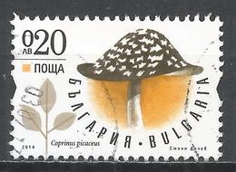 Bulgaria 2014. Scott #4662 (U) Mushroom, Coprinus Picaceus * - Bulgarie
