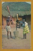 Circulated Postcard Of Portuguese Guinea. Plowing Rice In Bissau.Photo Sierra, Bissau. Pilando Arroz. Rare.2 Scn. - Guinea Bissau