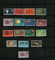 BARBADOS - QEII - 1966 - MARINE LIFE - MNH (16 Stamps) - Barbados (...-1966)
