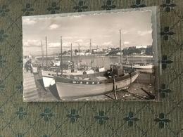 29 Douarnenez  1961 Port Treboul - Douarnenez