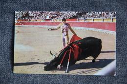 Curro GIRON : Corrida De Toros, Muerte Del Toro. - Corrida
