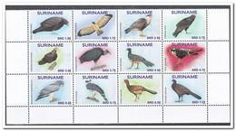 Suriname 2017, Postfris MNH, Birds - Suriname