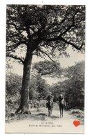 23128-LE-76-LE HAVRE-Forêt De Montgeon,une Allée-------------animée-cavaliers - Le Havre