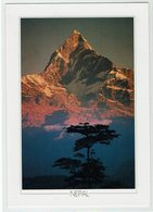 (027..417) Nepal - Nepal