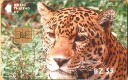 Belize - BLZ-BTL-04, Jaguar, Animals (Fauna) , Cats, 5$, Mint - Belize