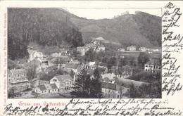 Gruss Aus GUTTENSTEIN (NÖ) - Gel.1898?,Rückseite Etwas Fleckig - Gutenstein
