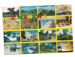 Zimbabwe All Fruit Stamp Send To Yugoslavia 1991 ( - Zimbabwe
