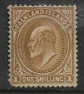 Falkland Islands, Edward VII, 1904, 1/=, MH * - Falkland Islands