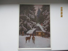 HUNTING , ROE DEER , PAUL HEY SIGNED ,  POSTCARD , 0 - Tierwelt & Fauna