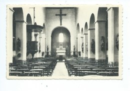 Bierbeek : Binnenzicht Der Kerk - Bierbeek