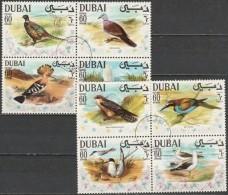 Dubai 1968, Birds (CTO, O) - Vogels