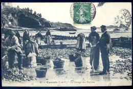 Cpa Du 35 Cancale , Le Lavage Des Huîtres    Aout18-8 - Cancale