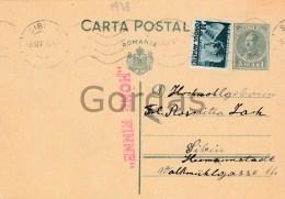 Romania - Paltinis - Hohe Rinne - Rare Postal History Stample - Werbepostkarten