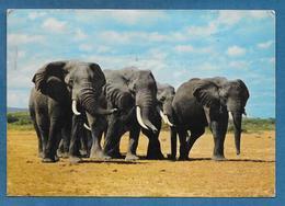 KENYA 1970 ELEPHANT - Kenia