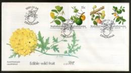Bophuthatswana 1991 Edible Wild Fruits Plant Tree FDC # 16506 - Fruit