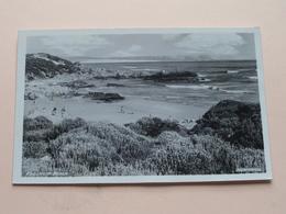 VOELKLIP BEACH ( Hermanus )  Anno 19?? ( Zie Foto Voor Details ) ! - Afrique Du Sud