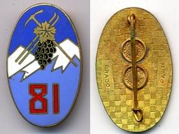81° Régiment D'Infanterie Alpine - Armée De Terre