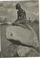 X3929 Copenhagen Kobenhavn - The Little Mermaid Den Lille Havfrue / Viaggiata 1957 - Danimarca