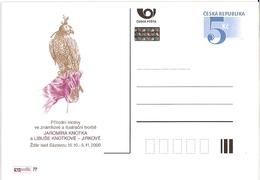 CDV B 273 Czech Republic J. Knotek And L. Knotkova Exhibition In Zdar 2000 - Aigles & Rapaces Diurnes