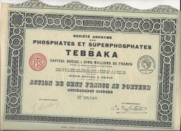 PHOSPHATES ET SUPERPHOSPHATES DE TEBBAKA  - 1924 - ACTION DE 100 FRS - Industrie
