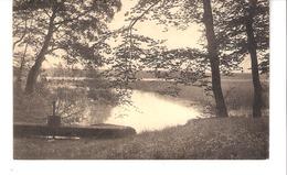 "Environs De Chimay-Le Lac De Virelles-Vanne D'étang-Timbre ""Cérès"" COB 337 De 1932 - Chimay"