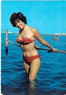 ** Lot De 2 Cartes ** PIN-UP ( Original Vintage 1960-70's ) CPSM Grand Format N° 3205/11 Et 5 - Pin-Ups
