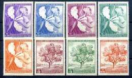 A14048)Blumen: Paraguay 1447 - 1554** - Altri