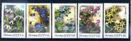 A14161)Blumen: UDSSR 5278 - 5282** - Altri