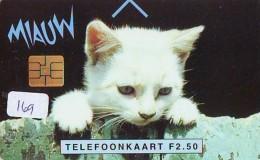 NEDERLAND CHIP TELEFOONKAART CRD-169 * CAT * KAT * CHAT * KATZE  * Telecarte A PUCE PAYS-BAS ONGEBRUIKT  MINT - Katten