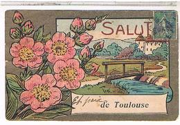 31 TOULOUSE SALUT 1918 - Toulouse