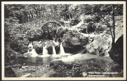 Petite Suisse Luxembourgeoise, Schiessentümpel, Carte Ancienne (2scans) - Cartes Postales