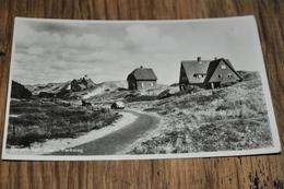 782- Bergen Aan Zee, Parkweg - 1951 - Nederland