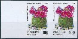 B2130 Russia Rossija Flora Plant Cactus Flower Nature Pair Colour Proof - Sukkulenten