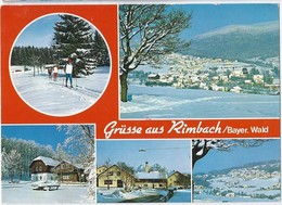 DE.- RIMBACH / Bayer. Wald. Grüsse Aus Rimbach / Bayer. Wald. 1981. - Gruss Aus.../ Gruesse Aus...