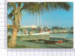 Cuba ~ Darsena De Varadero ~ Matanzas ~ 1984 - Cuba