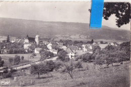 Huo-  25 Doubs   Cpsm  DAMBELIN - Andere Gemeenten
