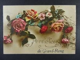 Affections De Grand-Reng - Erquelinnes